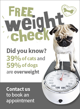 Free weight check at Oaklands Veterinary Centre